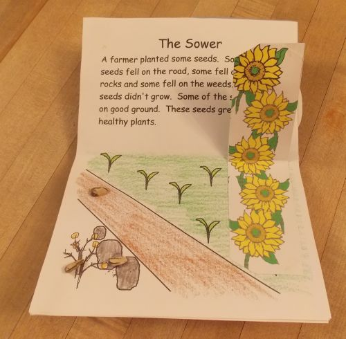 Lift up the flap and see the beautiful flowers that have grown in the ...